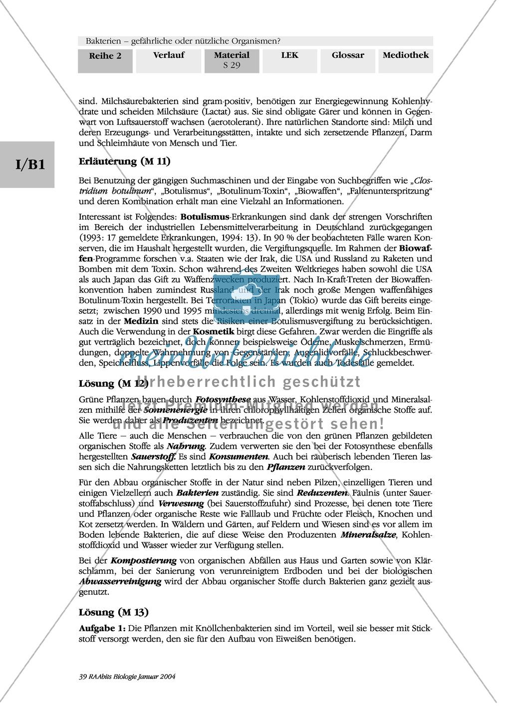 Bakterien im Stoffkreislauf: Lückentext Preview 1