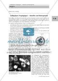 Geflügelpest (Vogelgrippe) - Aktuelles und Hintergründe Preview 1