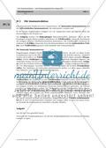Die Immunreaktion – mit Strukturlegekärtchen dargestellt Preview 5