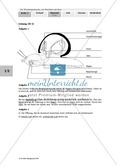 Nahrungsaufnahme und Atmung bei der Weinbergschnecke: Beschriften, Lückentext Thumbnail 2