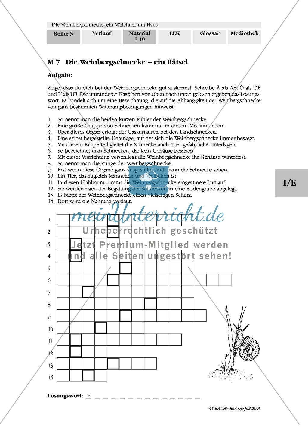 Weinbergschnecke: Rätsel Preview 0