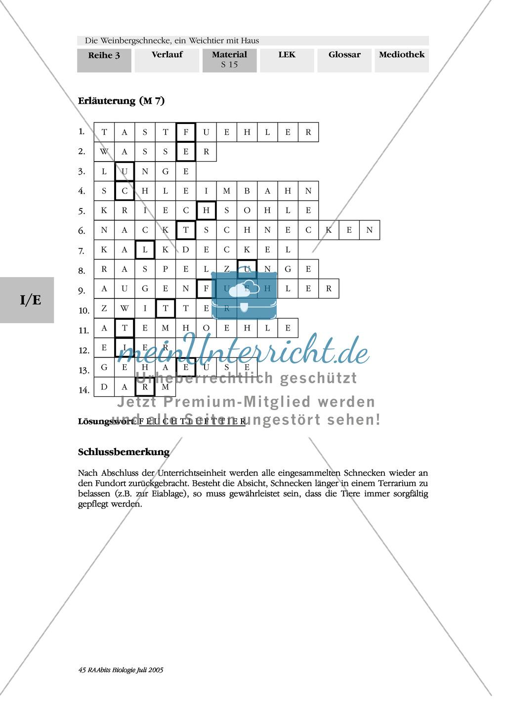 Weinbergschnecke: Rätsel Preview 1