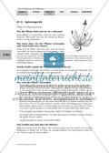 Die Geheimnisse der Heilkräuter Preview 22