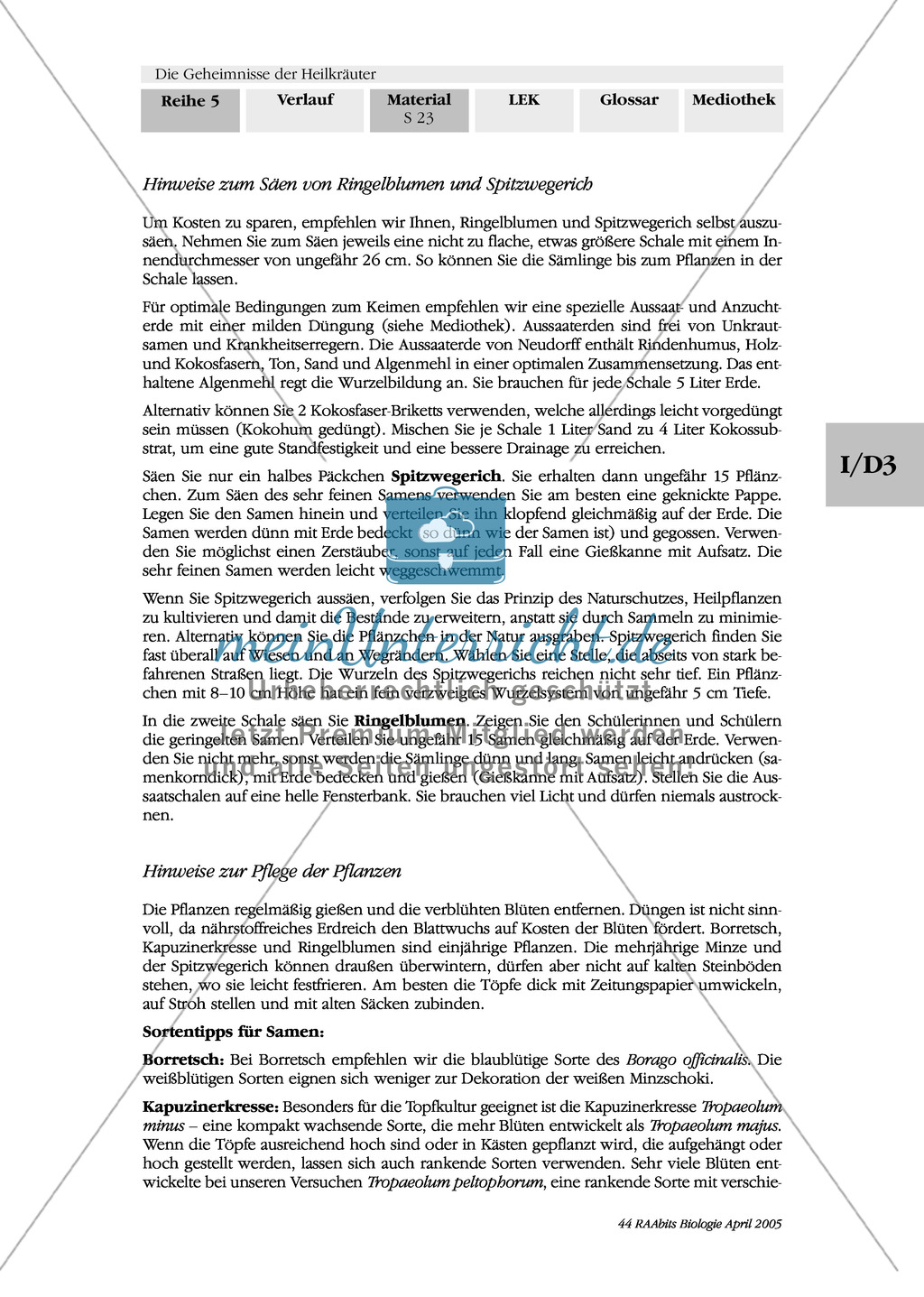 Säen und Pflanzen von Heilkräutern: Besorgungsliste, Gruppenarbeit, Kapuzinerkresse, Ringelblume, Spitzwegerich, Minze, Borretsch Preview 6