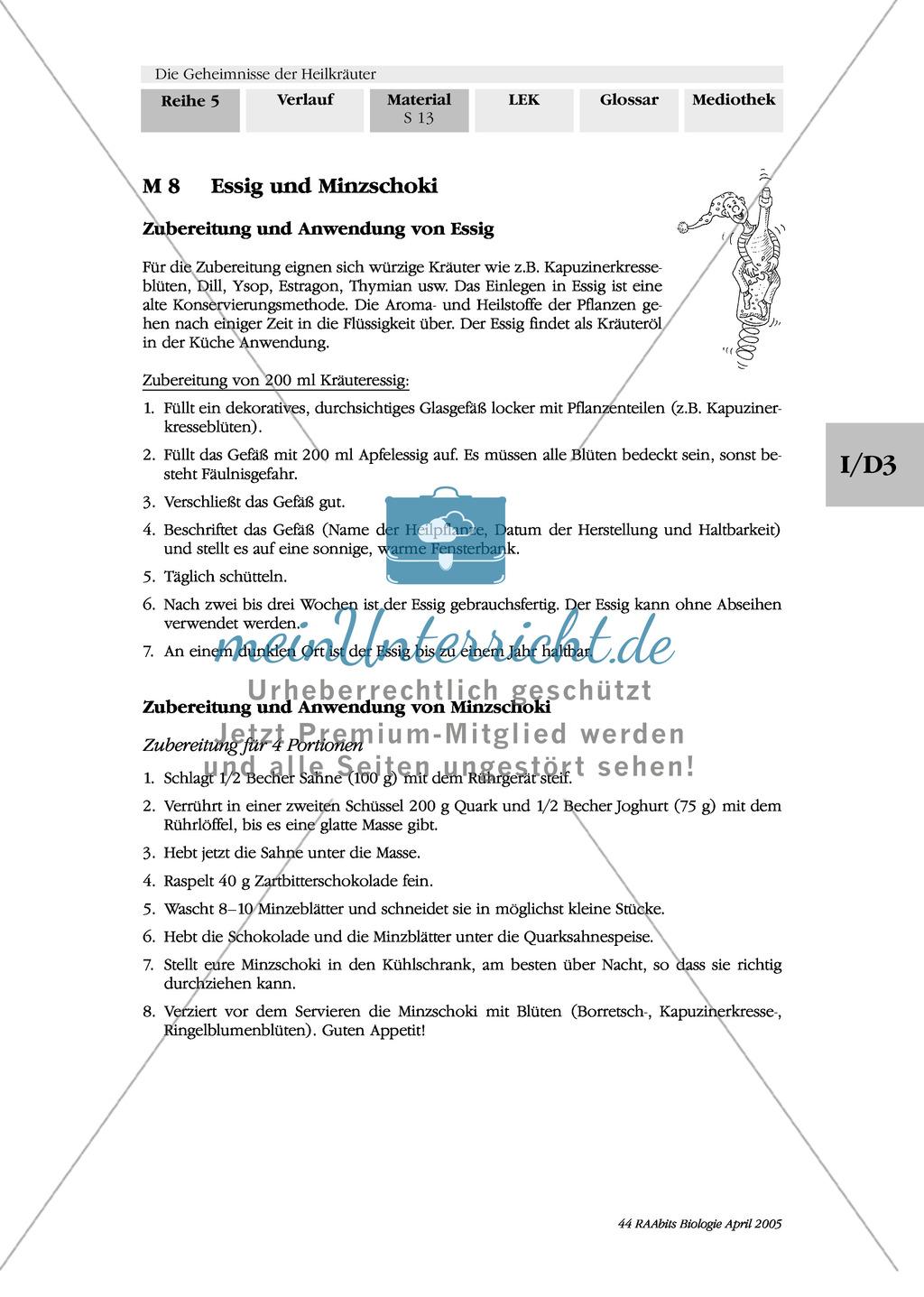 Rezepte mit Heilkräutern: Gruppenarbeit, Ringelblumencreme, Minzschoki, Tee, Essig, Öl Preview 3