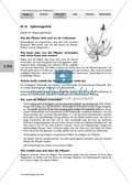 Heilpflanzenportraits: Gruppenarbeit, Texte, Ringelblume, Spitzwegerich, Kapuzinerkresse, Minze, Borretsch Preview 5