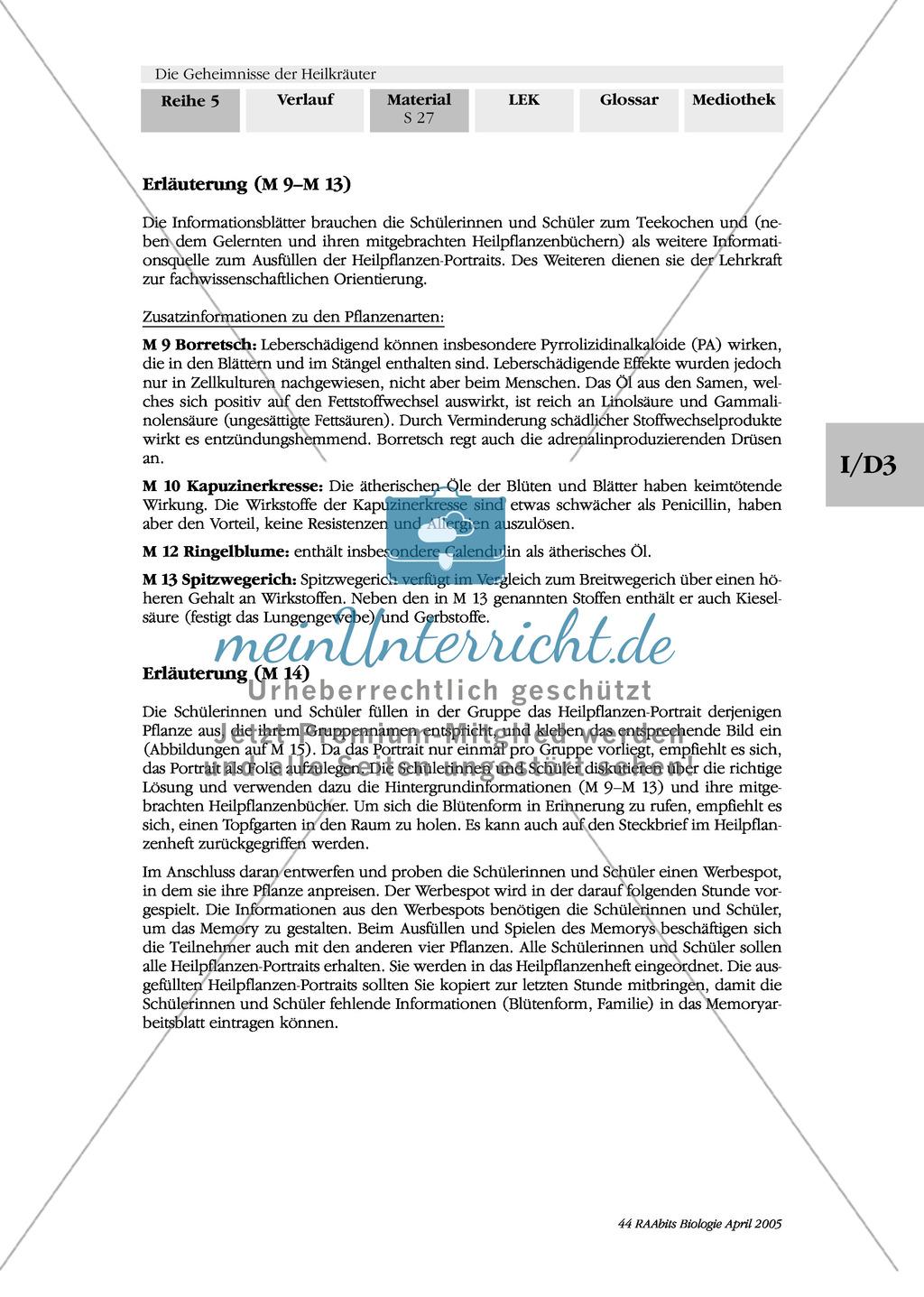 Heilpflanzenportraits: Gruppenarbeit, Texte, Ringelblume, Spitzwegerich, Kapuzinerkresse, Minze, Borretsch Preview 7