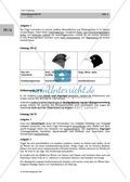 Zug- und Standvögel: Zuordnung Körner- und Insektenfresser Preview 2