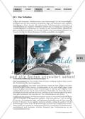 Anpassungen der Blassen Rennmaus an ihren Lebensraum / Torpor als eine besondere Stoffwechselanpassung / Preview 9