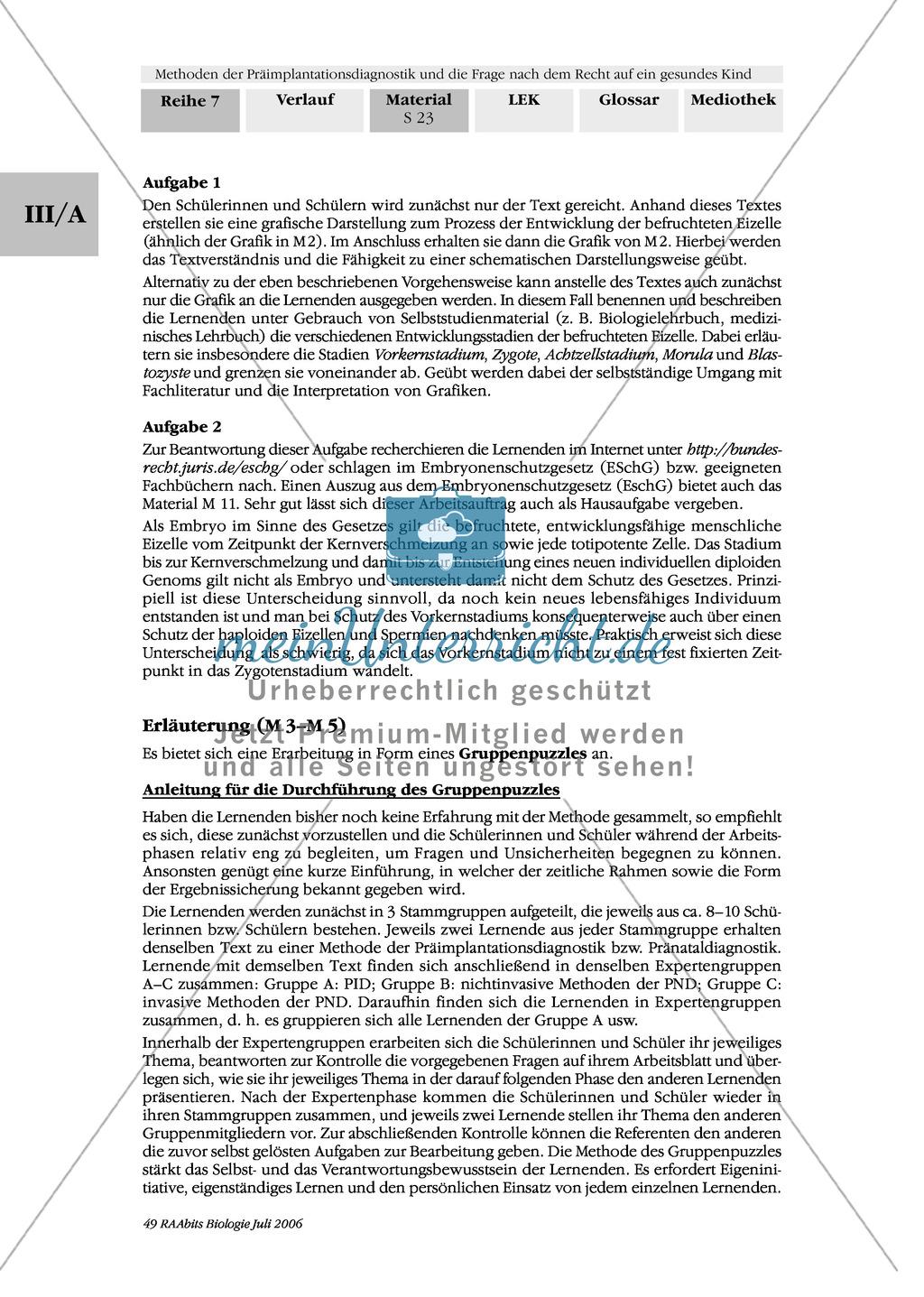 Text zur Entwicklung der befruchteten Eizelle und Gruppenpuzzle zur Präimplantationsdiagnostik und Pränataldiagnostik Preview 13