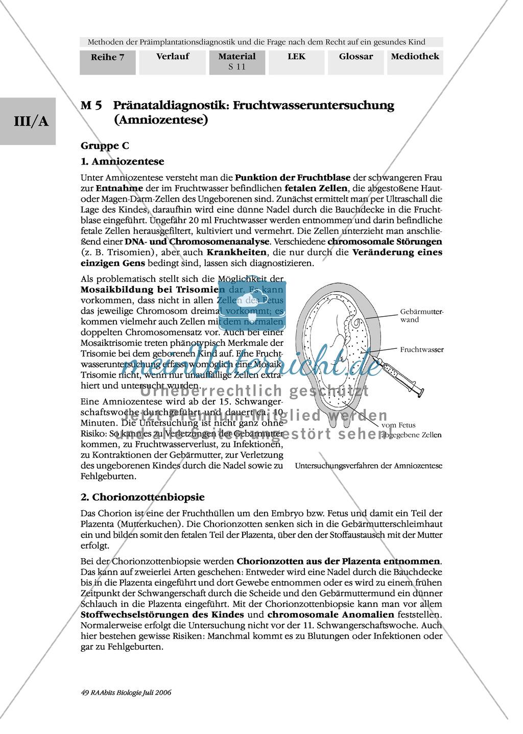 Beautiful Kontraktionen Arbeitsblatt Für Die Erste Klasse Pictures ...
