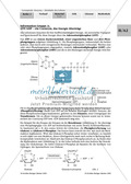 Enzyme: Arbeitsinseln zu den Themen Stoffwechsel, Enzymreaktionen, Hemmstoffe, Cofaktoren, Regulation Preview 15
