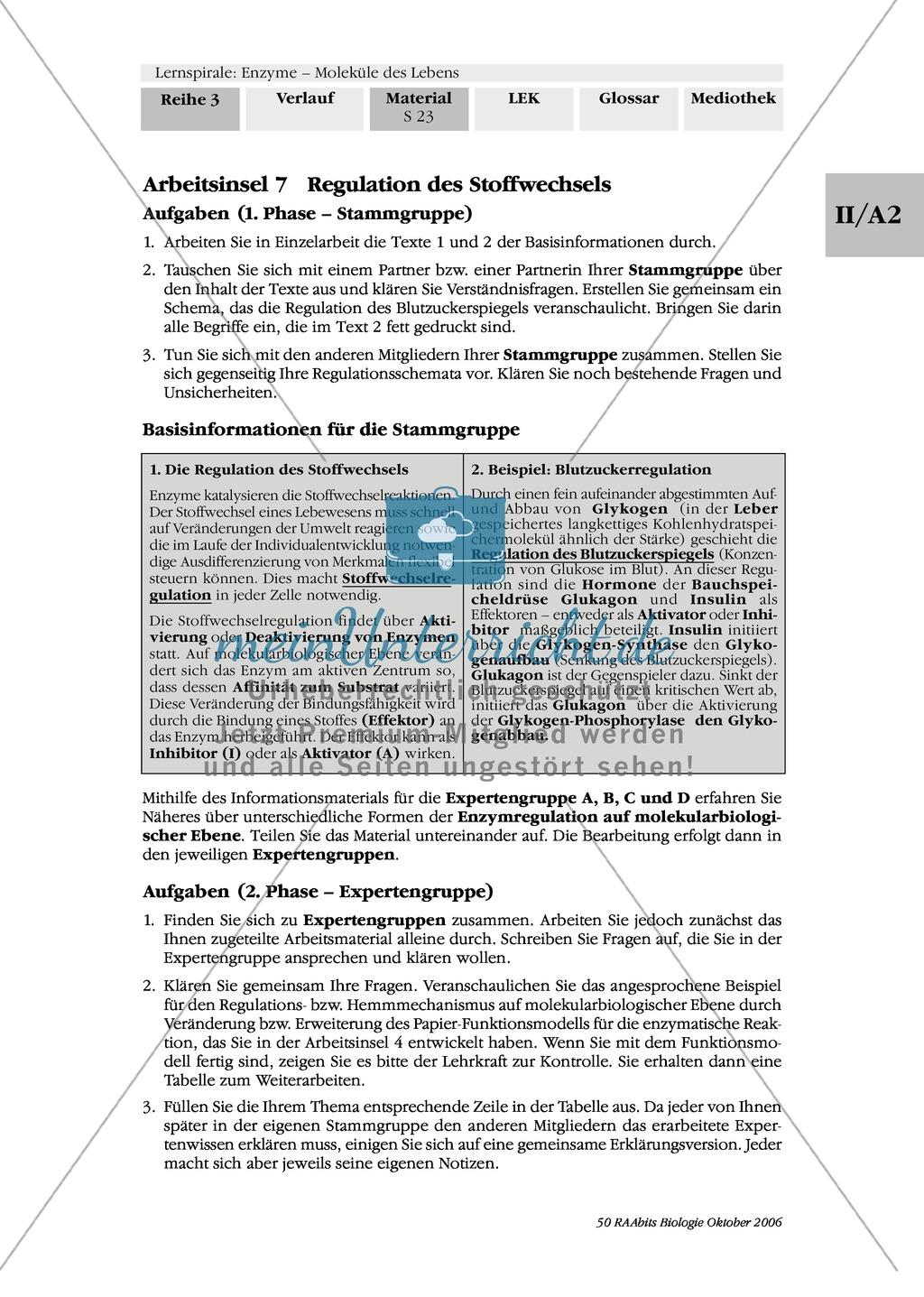 Enzyme: Arbeitsinseln zu den Themen Stoffwechsel, Enzymreaktionen, Hemmstoffe, Cofaktoren, Regulation Preview 16