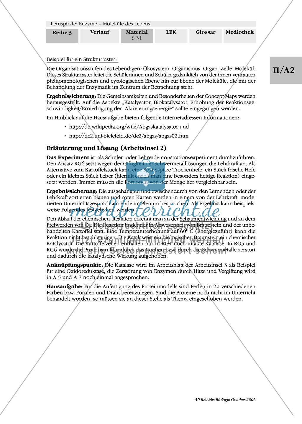 Enzyme: Arbeitsinseln zu den Themen Stoffwechsel, Enzymreaktionen, Hemmstoffe, Cofaktoren, Regulation Preview 23