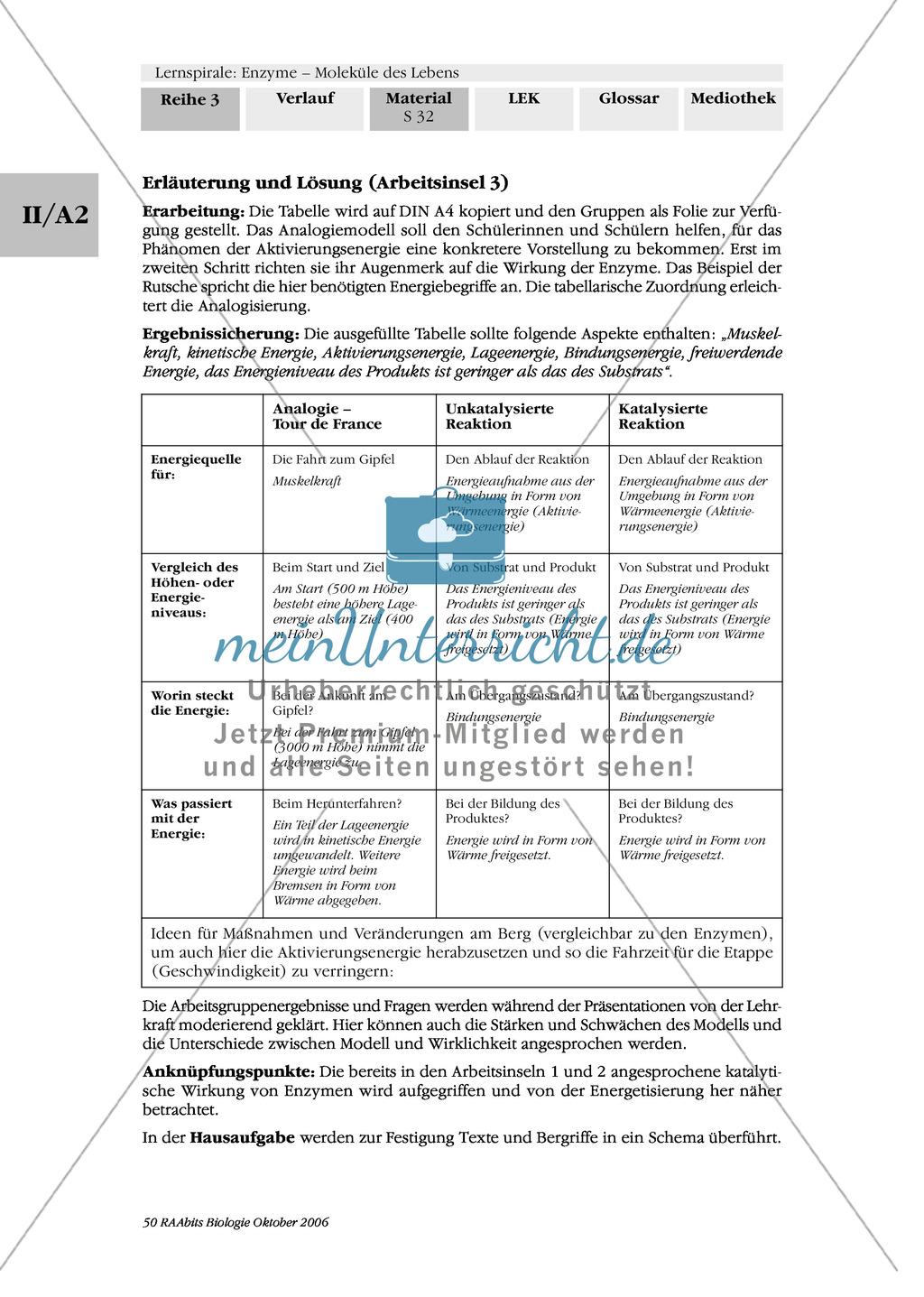 Enzyme: Arbeitsinseln zu den Themen Stoffwechsel, Enzymreaktionen, Hemmstoffe, Cofaktoren, Regulation Preview 24