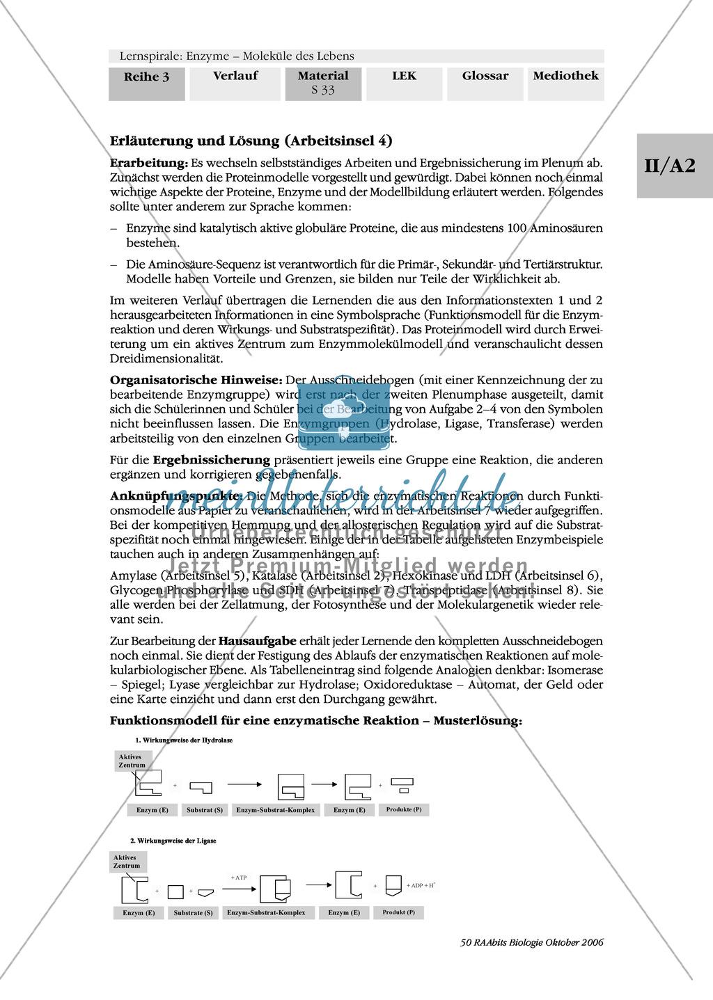 Enzyme: Arbeitsinseln zu den Themen Stoffwechsel, Enzymreaktionen, Hemmstoffe, Cofaktoren, Regulation Preview 25