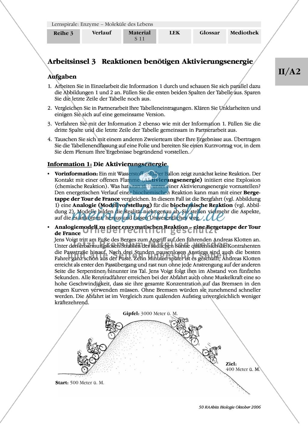 Enzyme: Arbeitsinseln zu den Themen Stoffwechsel, Enzymreaktionen, Hemmstoffe, Cofaktoren, Regulation Preview 4