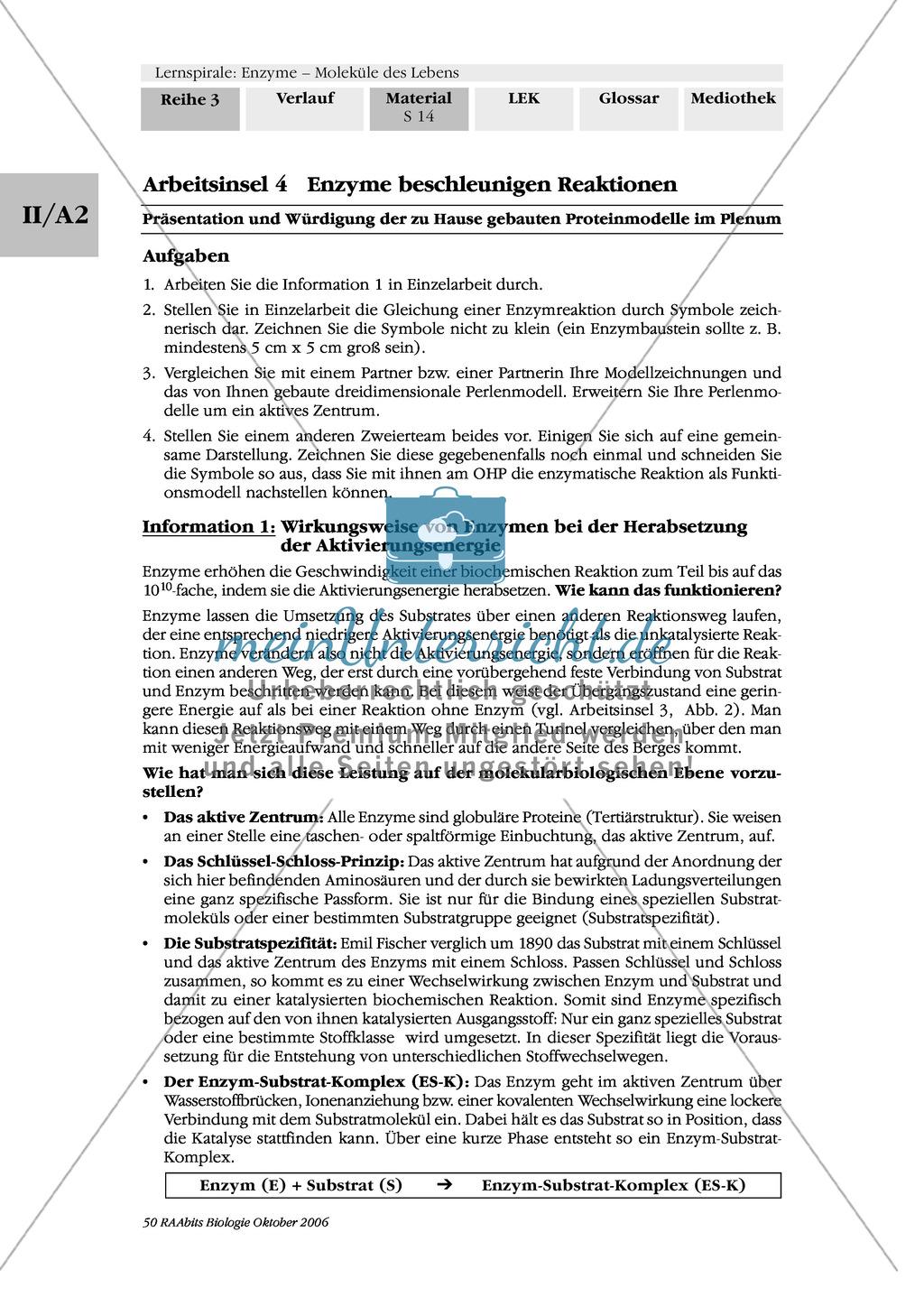 Enzyme: Arbeitsinseln zu den Themen Stoffwechsel, Enzymreaktionen, Hemmstoffe, Cofaktoren, Regulation Preview 7
