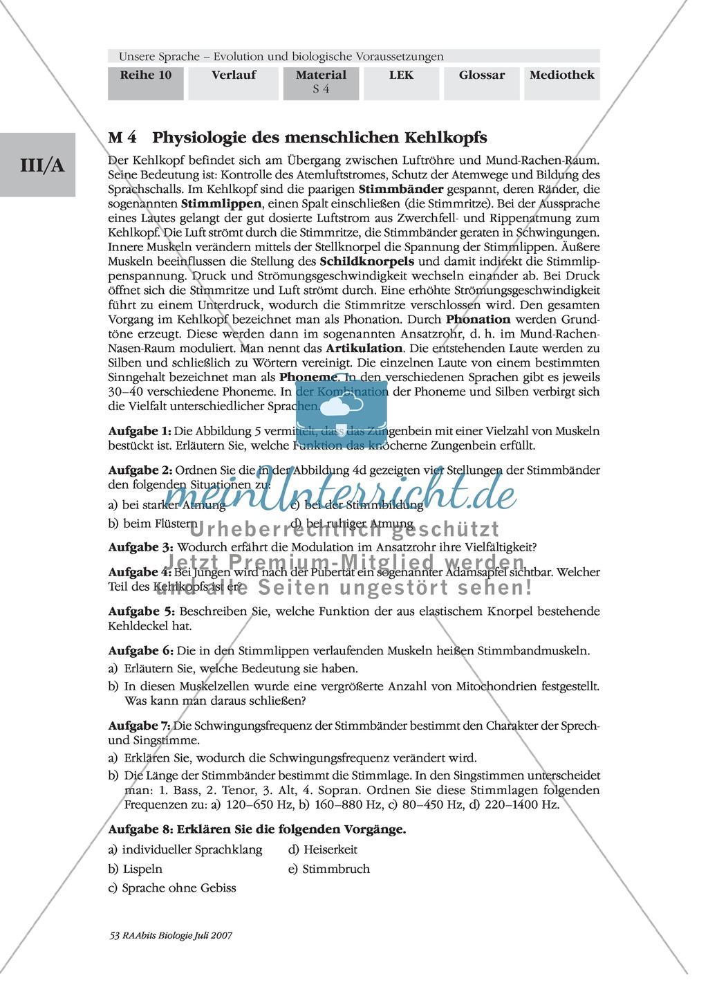 Ausgezeichnet Evolution Studie Führer Arbeitsblatt Bilder - Super ...