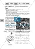 Gefährdung und Schutz der Schmetterlinge Preview 1