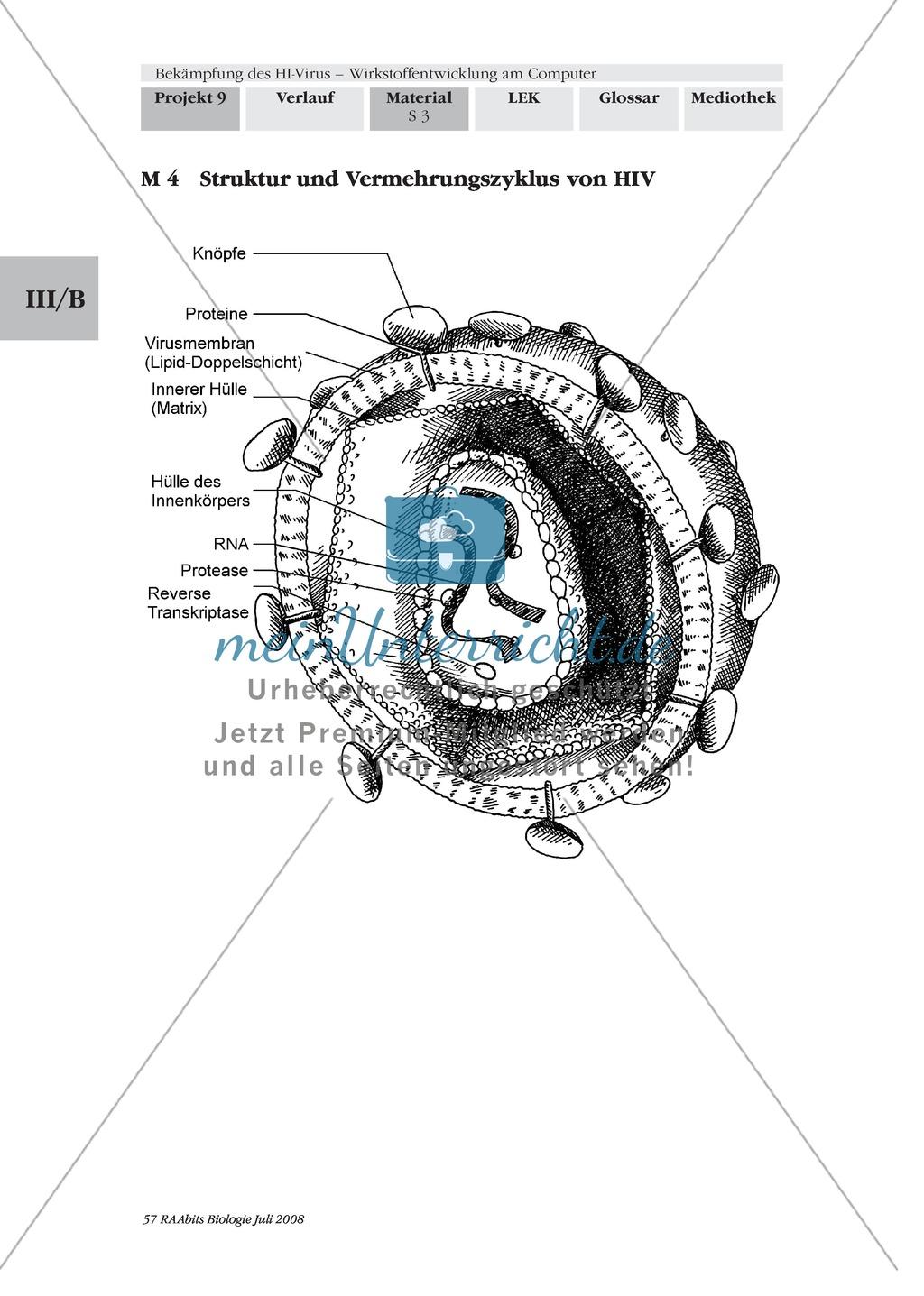 Enzymhemmung als Therapieansatz zur Behandlung von HIV kennenlernen Preview 1
