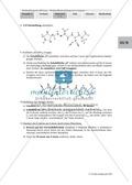 Einen kompetitiven HIV-Protease-Inhibitor durch Rationale Wirkstoffentwicklung in Expertenteams entwickeln Thumbnail 13