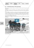 Biologie, Bau und Funktion von Biosystemen, Interaktion von Organismus und Umwelt, Tier, Haustier, Hund, Wolf