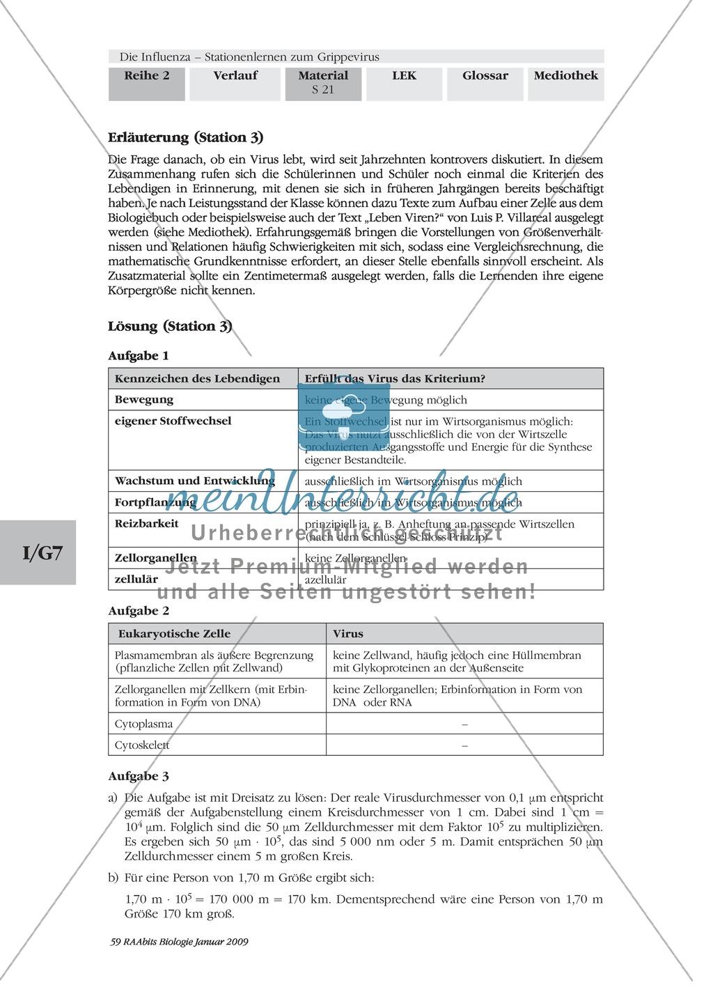 Stationsarbeit zum Thema Influenza mit Themen zur Vogelgrippe, Viren und Fieber Preview 19