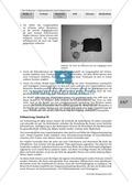 Stationsarbeit zum Thema Influenza mit Themen zur Vogelgrippe, Viren und Fieber Preview 25