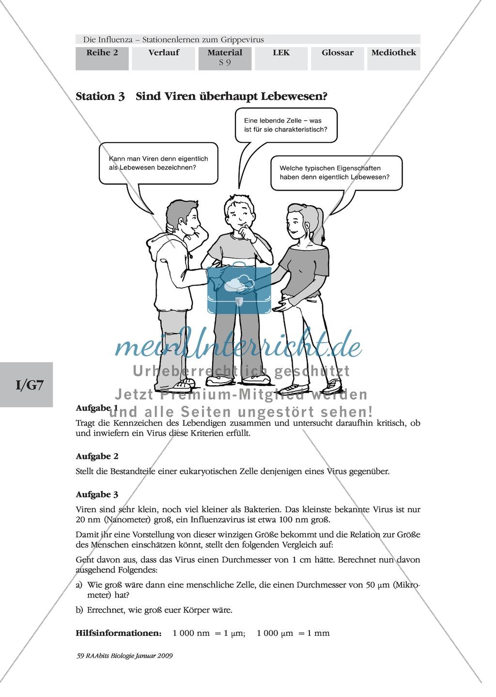 Definition, Beschreibung und Vermehrungskreislauf von Viren am Beispiel Influenza und Vogelgrippe: Textarbeit, Bildbeschreibung, Skizzieren, Eigenrecherche Preview 4