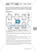 Definition, Beschreibung und Vermehrungskreislauf von Viren am Beispiel Influenza und Vogelgrippe: Textarbeit, Bildbeschreibung, Skizzieren, Eigenrecherche Preview 7