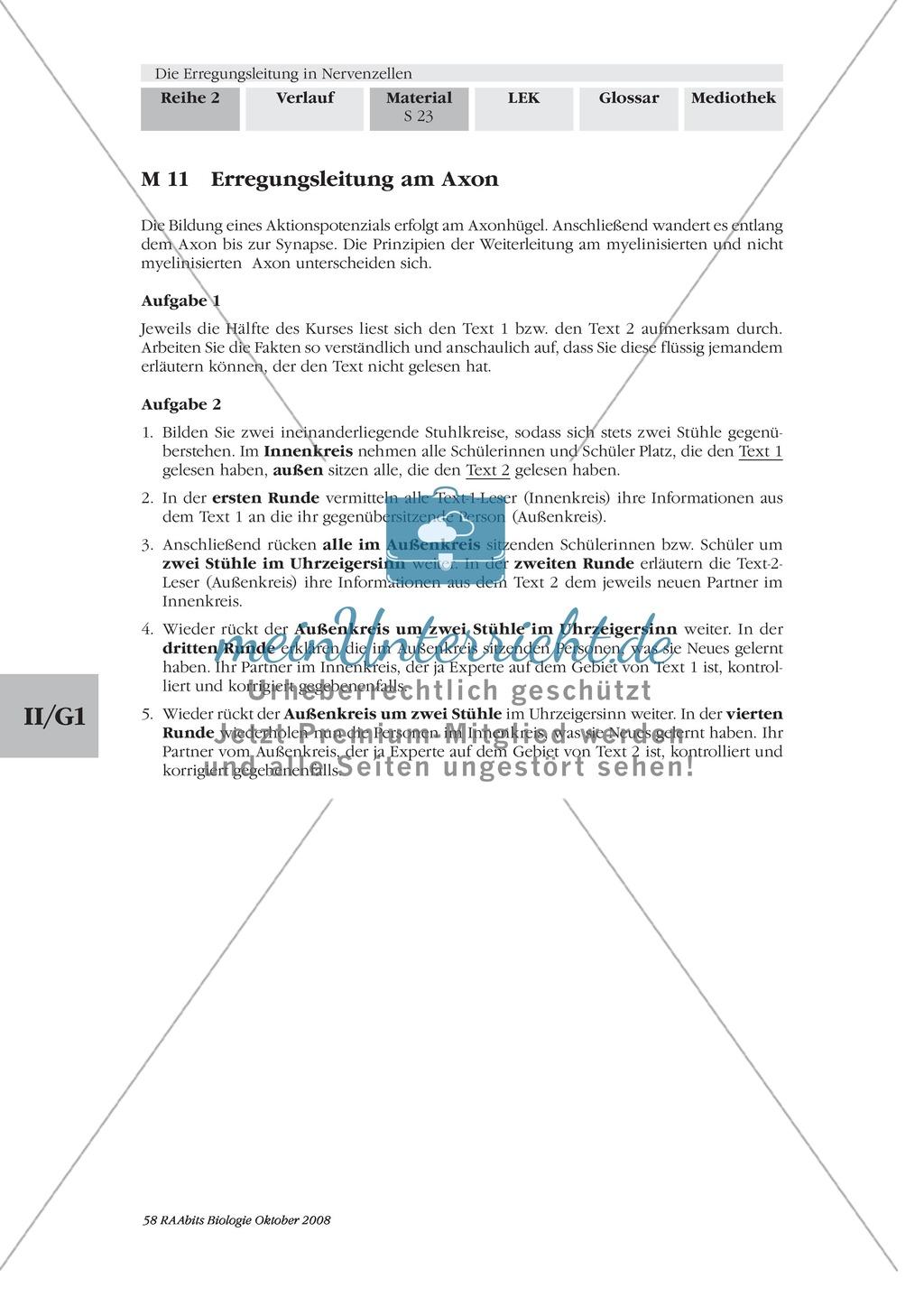 Die Erregungsleitung am Axon selbstständig erklären: Stärkung der Textarbeit und Kommunikationsfähigkeit im Biologie-Unterricht Preview 0