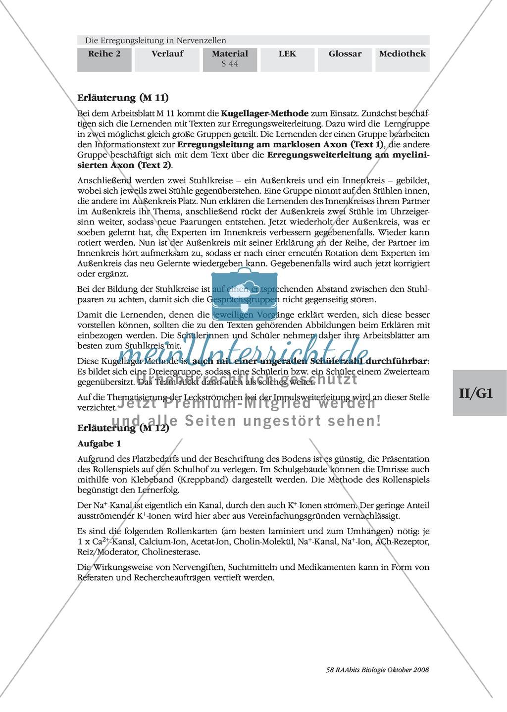 Die Erregungsleitung am Axon selbstständig erklären: Stärkung der Textarbeit und Kommunikationsfähigkeit im Biologie-Unterricht Preview 5