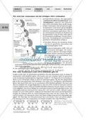 Die Teilprozesse der Proteinbiosynthese: Mini-Gruppenpuzzle Preview 5
