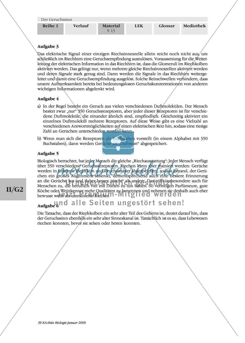 Geruchssinn: Funktion, Ablauf: Text Preview 7