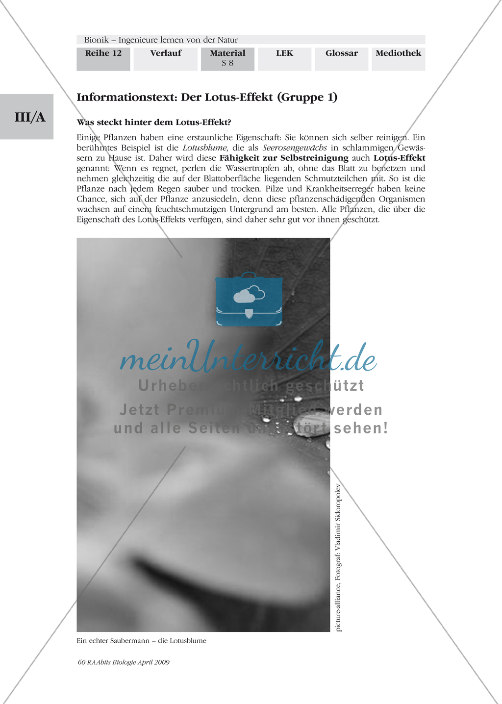 Bionik: Der Lotus-Effekt - Wandplakat Preview 1