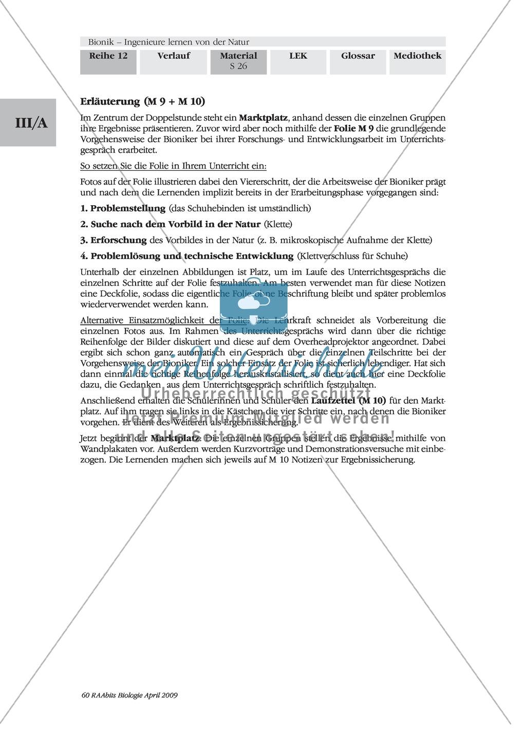 Bionik: Die Vorgehensweise der Bioniker am Beispiel der Erfindung des Klettverschlusses Preview 2