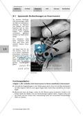 Biologie, Bau und Funktion von Biosystemen, Tier, Insekten, Feuerwanzen