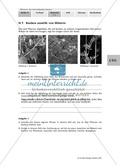 Kletterpflanzen: Ranken als Kletterorgane Preview 3