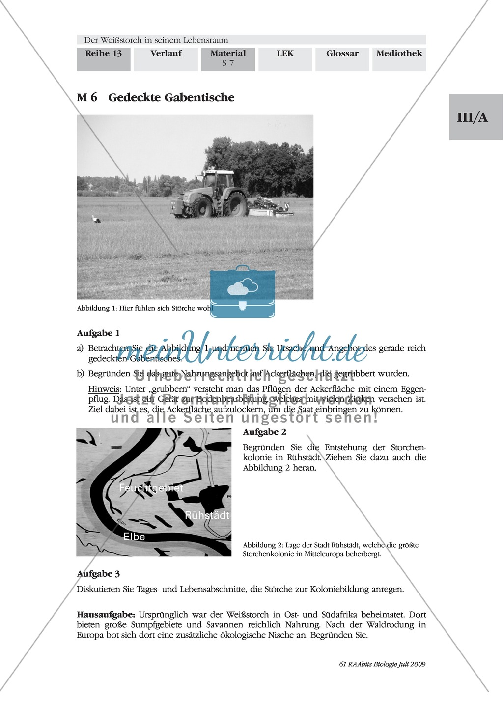 Das Leben der Storche am Beispiel ihrer Nahrung, Nahrungssuche und Fortpflanzung Preview 2