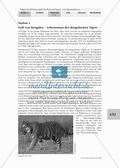 Stationenlernen: Klimawandel und Folgen für Flora und Fauna Thumbnail 9