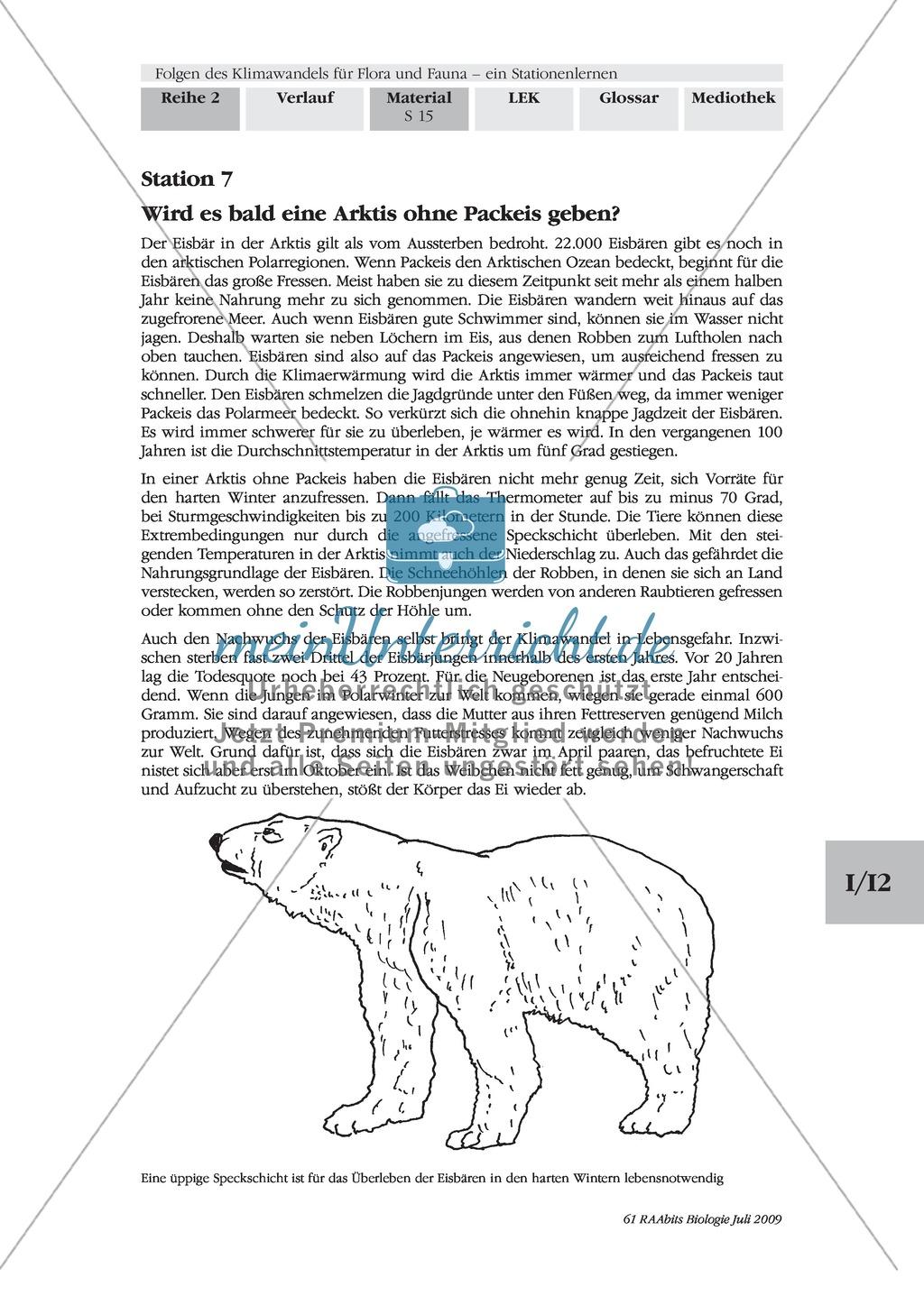 Stationenlernen: Klimawandel und Folgen für Flora und Fauna Preview 13
