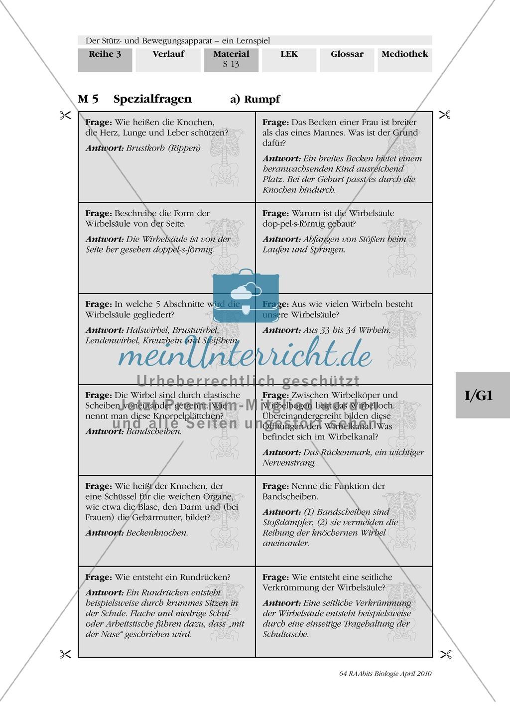 Lernspiel zum Stütz- und Bewegungsapparat: Spielanleitung, Spielfeld, Skelett-Puzzleteile, Fragen, Spielkarten, Röntgenbilder Kontrollbogen, Lösungsbogen Preview 11