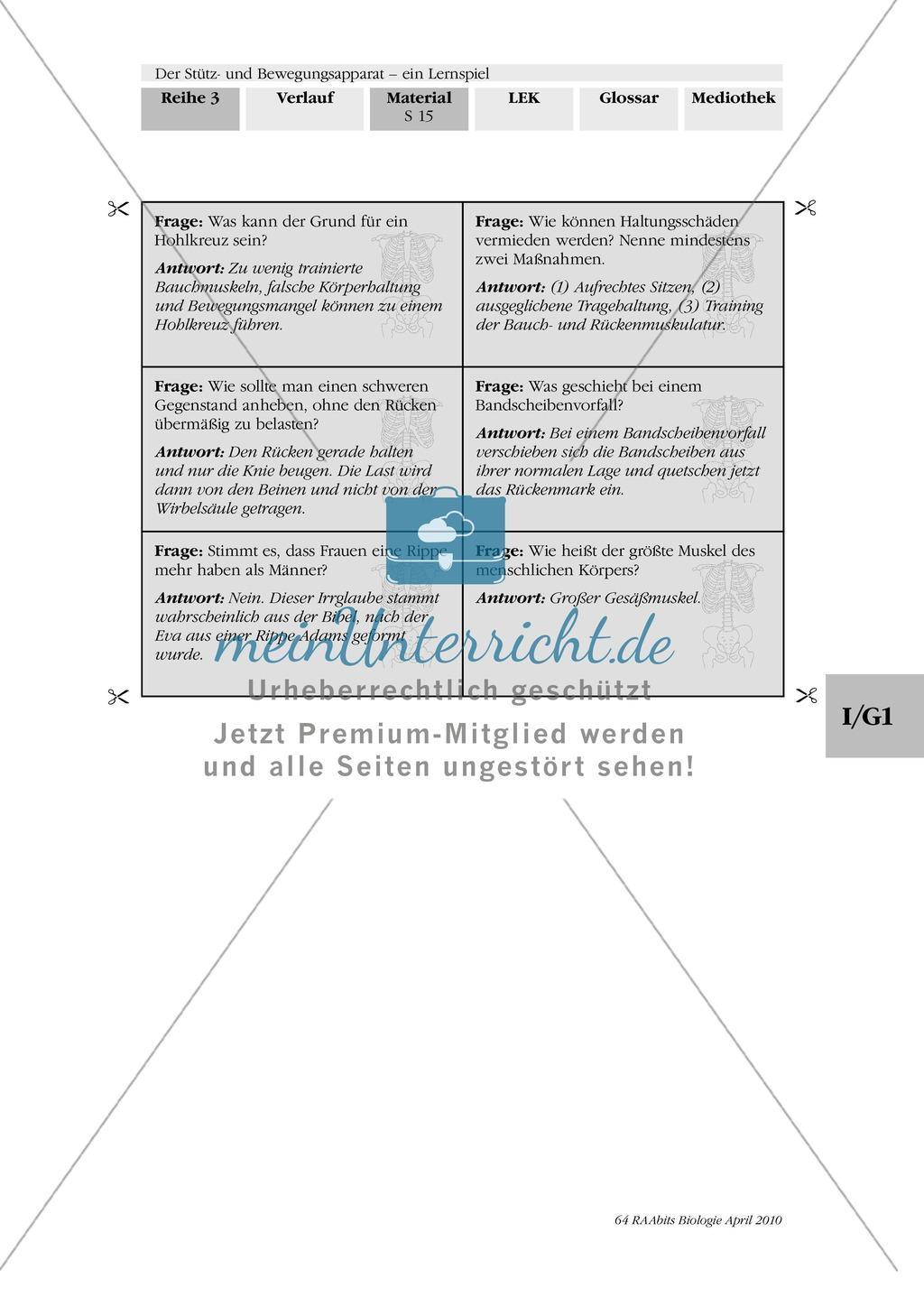 Lernspiel zum Stütz- und Bewegungsapparat: Spielanleitung, Spielfeld, Skelett-Puzzleteile, Fragen, Spielkarten, Röntgenbilder Kontrollbogen, Lösungsbogen Preview 13