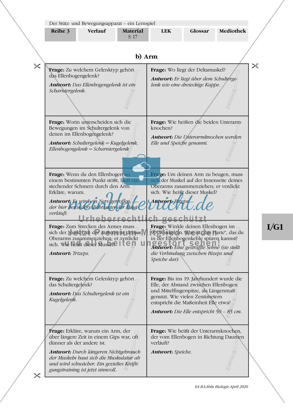Lernspiel zum Stütz- und Bewegungsapparat: Spielanleitung, Spielfeld, Skelett-Puzzleteile, Fragen, Spielkarten, Röntgenbilder Kontrollbogen, Lösungsbogen Preview 15