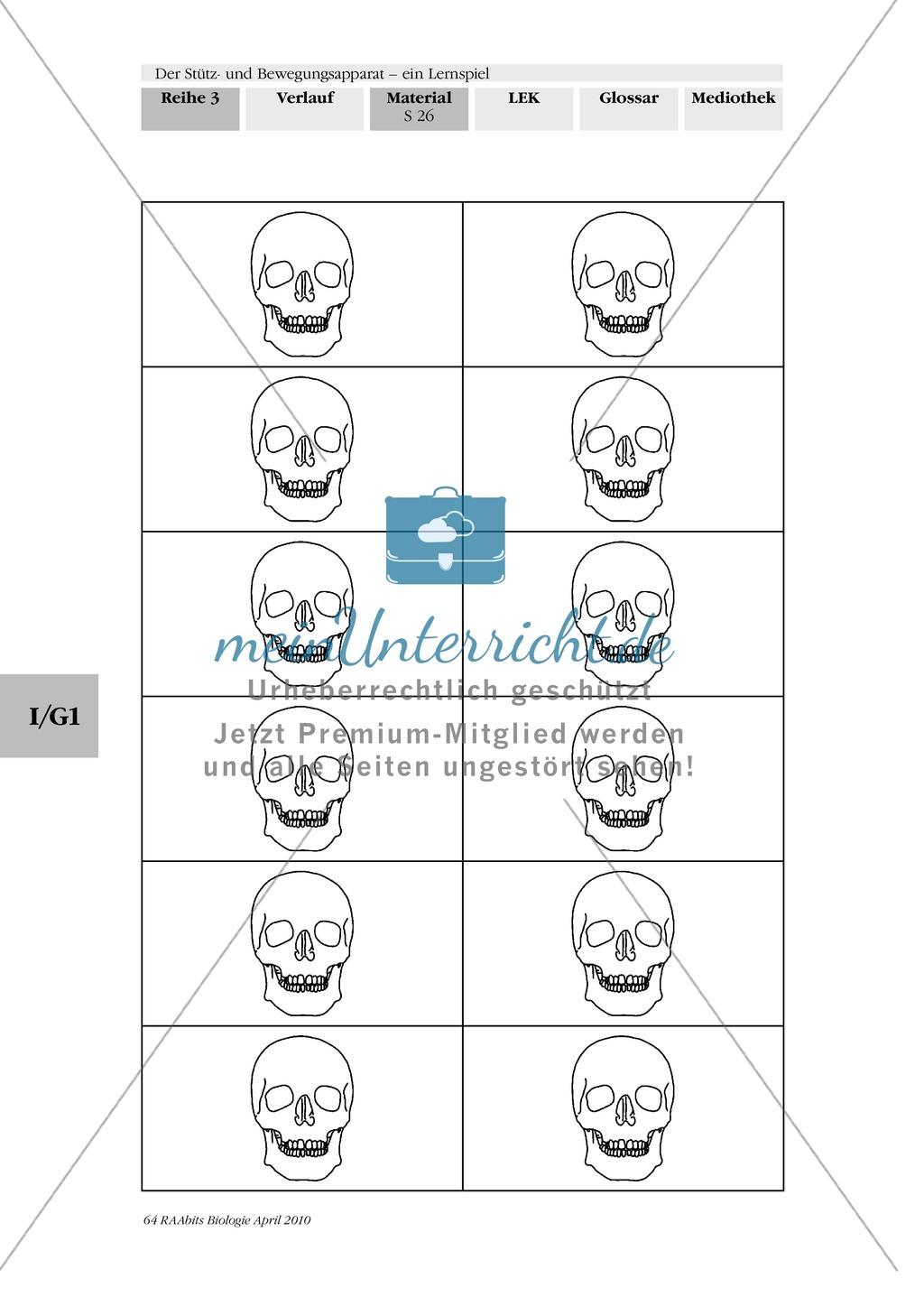 Lernspiel zum Stütz- und Bewegungsapparat: Spielanleitung, Spielfeld, Skelett-Puzzleteile, Fragen, Spielkarten, Röntgenbilder Kontrollbogen, Lösungsbogen Preview 24