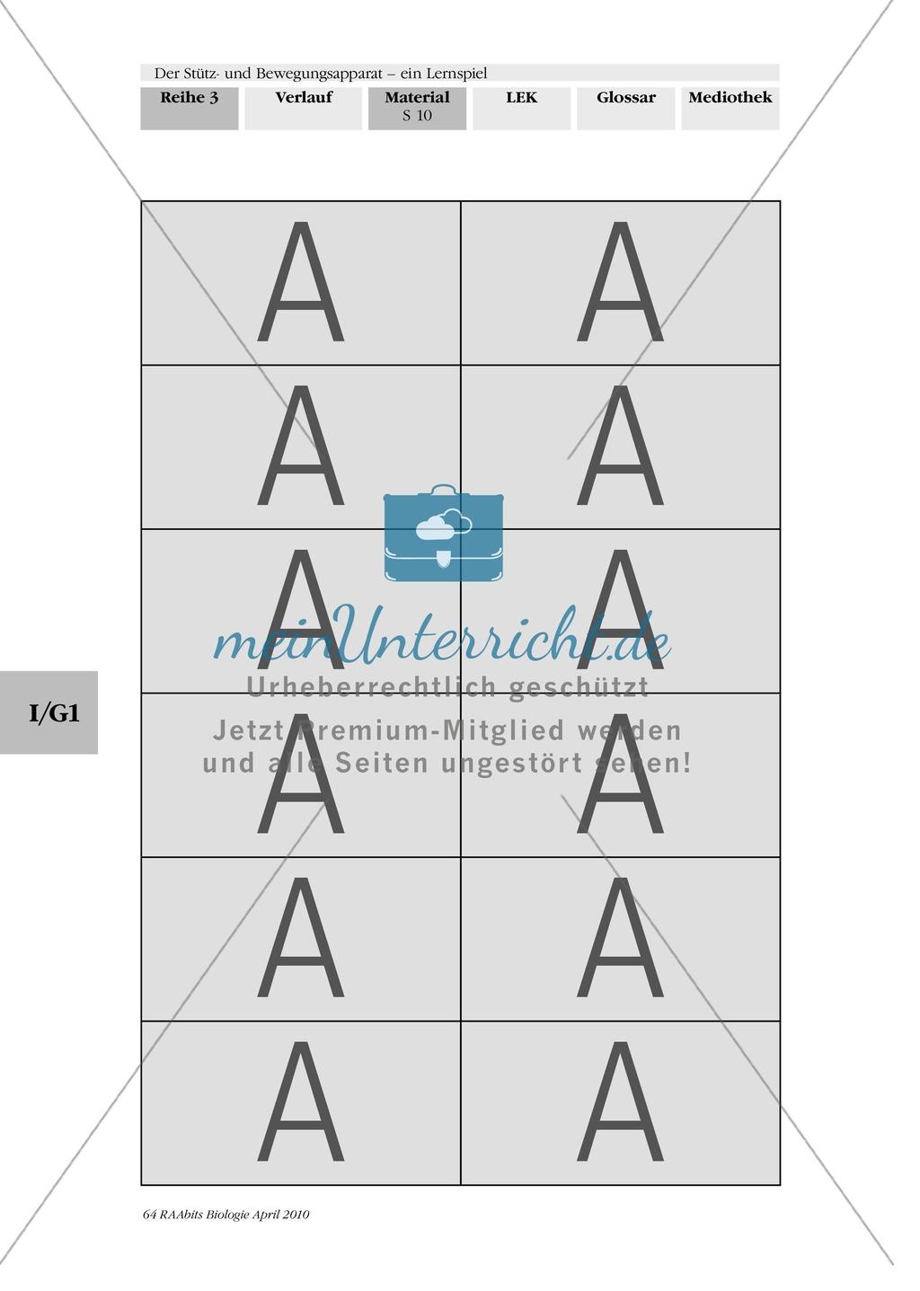 Lernspiel zum Stütz- und Bewegungsapparat: Spielanleitung, Spielfeld, Skelett-Puzzleteile, Fragen, Spielkarten, Röntgenbilder Kontrollbogen, Lösungsbogen Preview 8