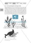Einführung in die Landschaft der Lüneburger Heide Preview 3