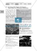 Pflegeverfahren zur Erhaltung der Heideflächen / Nährstoffgehalt im Heidekraut und Oberboden Preview 1