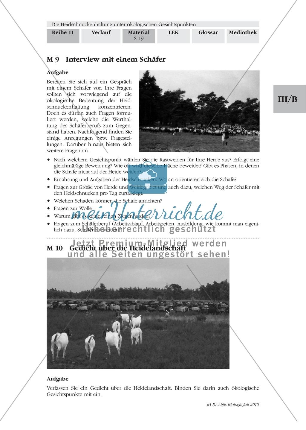 Das Ökosystem Heide und die Rolle der Heidschnucken bei der Beweidung Preview 11